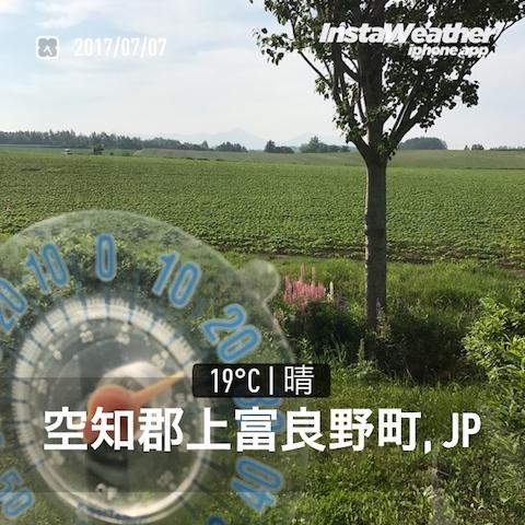IMG_7795.jpg