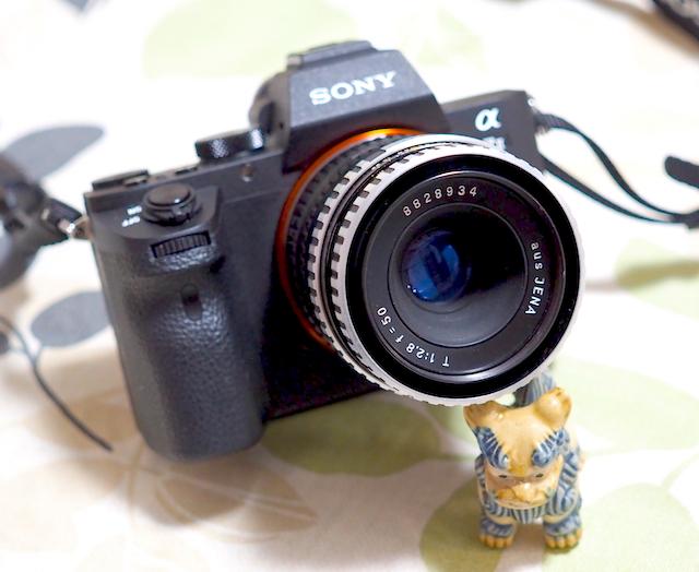 P3090027.jpg