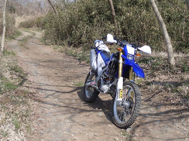 P3200200.JPG